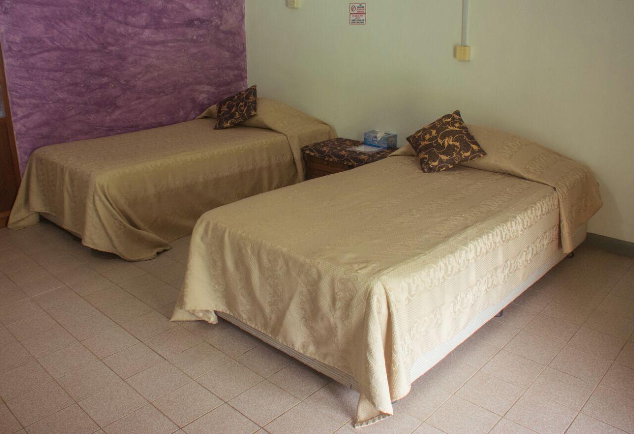 chalet room danum valley field centre