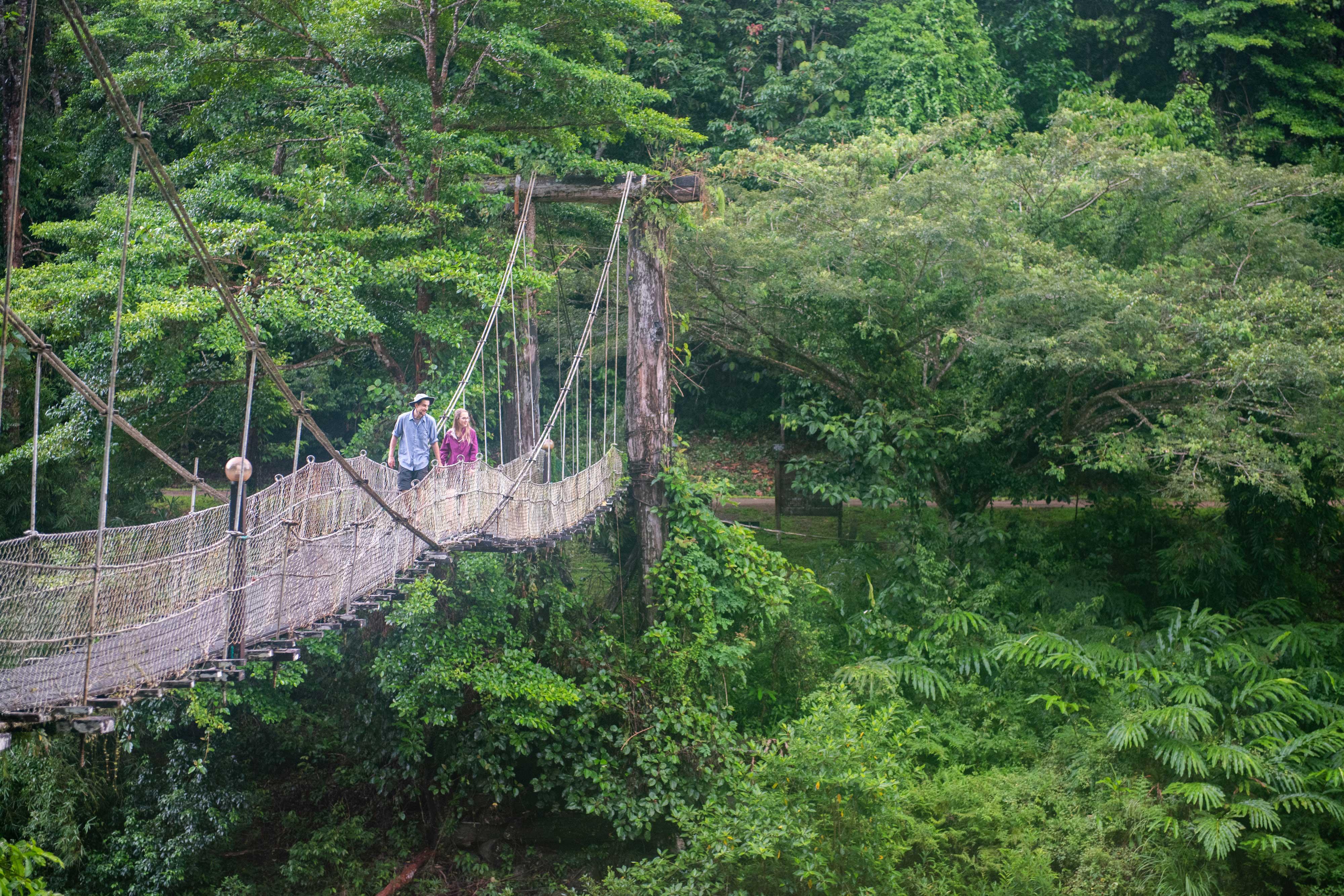 jungle trekking danum valley field centre