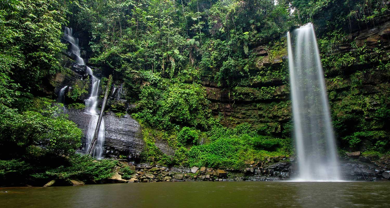 Ginseng Falls
