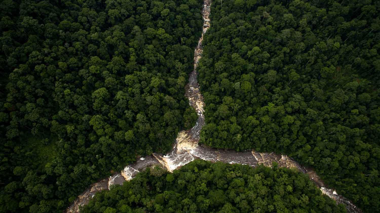 Maliau Basin: Trekking Sabah's Lost World