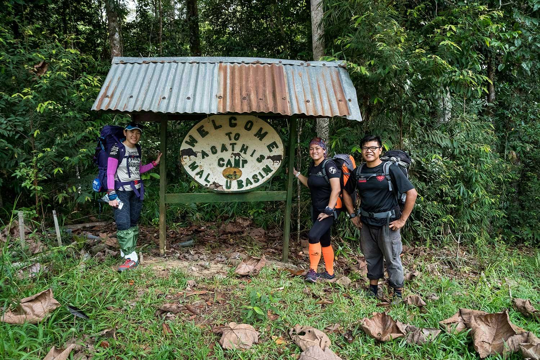 Magnificent Maliau Agathis Camp