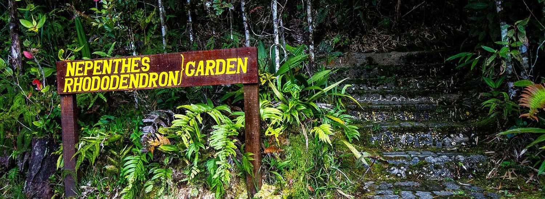 garden-trail-gunung-alab-1500-4