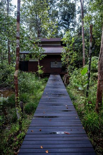 kinabatangan-wetlands-resort©SRT